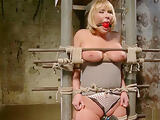 Pawg Mellanie Monroe anal toy on hogtie